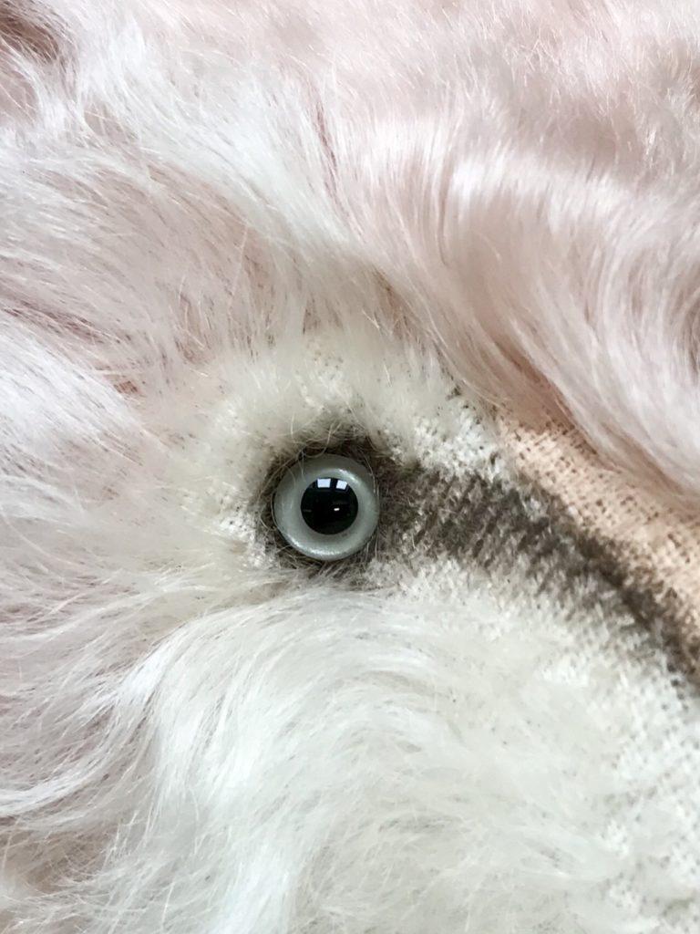 ピンクのオオカミ
